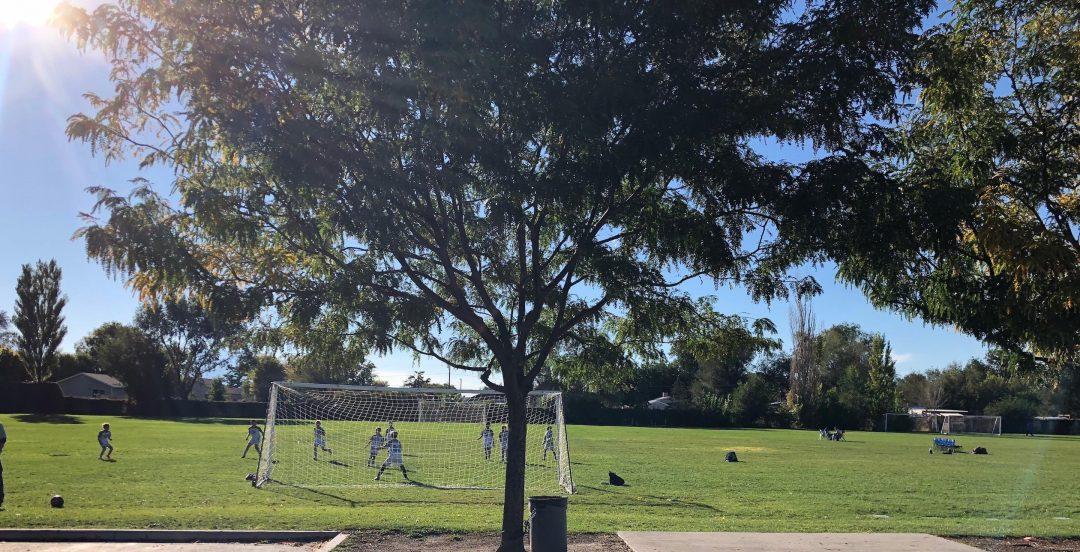 アメリカ少年サッカー記3 隣の芝は青く見えるサッカー環境