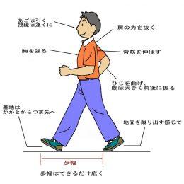 正しい歩き方・走り方 〜姿勢の基礎基本〜