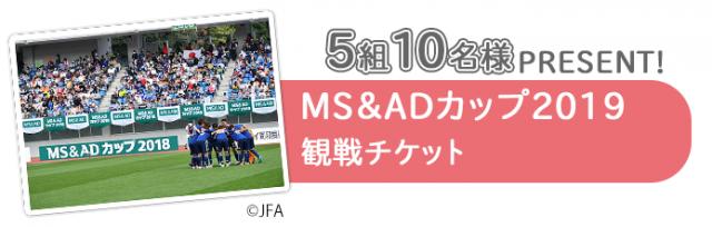 「MS&ADカップ2019」観戦チケット