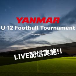【YANMAR U-12 Football Tournament】大会試合動画LIVE配信実施!