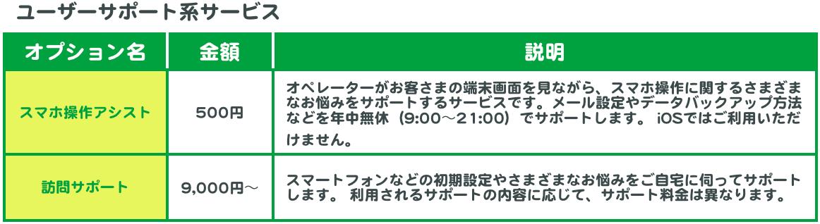 ユーザーサポート系オプションサービス一覧。スマホ操作アシスト(500円)、訪問サポート(9,000円〜)