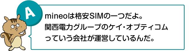 「mineoは格安SIMの一つだよ。関西電力グループのケイ・オプティコムっていう会社が運営しているんだ」と話す兄リス