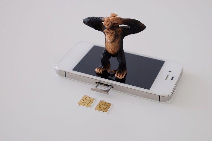 SIMカードをスロットにセットする方法