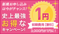 IIJmio「おトク&キャンペーン情報」