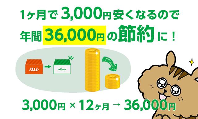 1ヶ月で3000円安くなるので年間36000円の節約に!