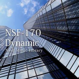 NSF-170 66-Dynamic