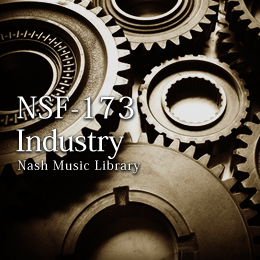 NSF-173 67-Industry