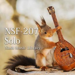 NSF-207 84-Solo