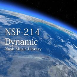 NSF-214 88-Dynamic