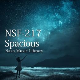 NSF-217 89-Spacious