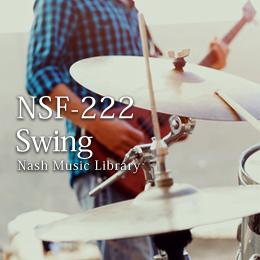 NSF-222 92-Swing