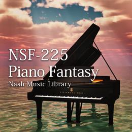 NSF-225 93-Piano Fantasy