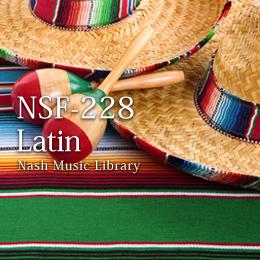 NSF-228 95-Latin