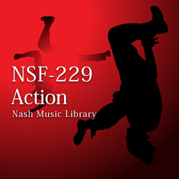 NSF-229 95-Action