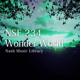 NSF-234 98-Wonder World