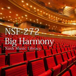 NSF-272 117-Big Harmony