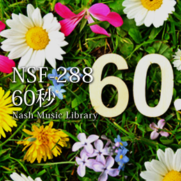 NSF-288 125-60 Second Themes