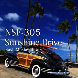 NSF-305 133-Sunshine Drive