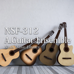 NSF-312 137-Acoustic Guitar Ensemble
