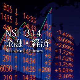 NSF-314 138-金融・経済