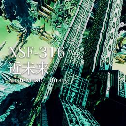 NSF-316 139-近未来