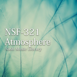 NSF-321 141-Atmosphere