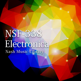 NSF-338 150-Electronica