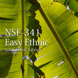 NSF-341 151-Easy Ethnic