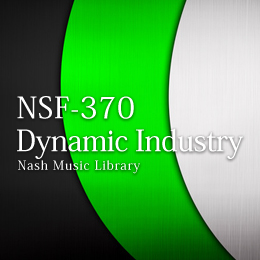 NSF-370 166-Dynamic Industry