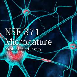 NSF-371 166-Micronature