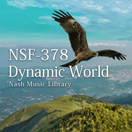 NSF-378 170-Dynamic World