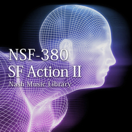 NSF-380 171-SF Action II