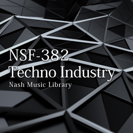 NSF-382 172-Techno Industry