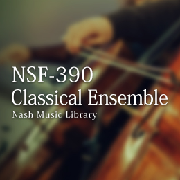 NSF-390 176-Classical Ensemble