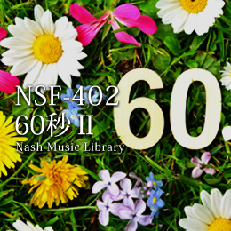 NSF-402 182-60 seconds II