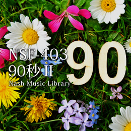NSF-403 182-90 seconds II