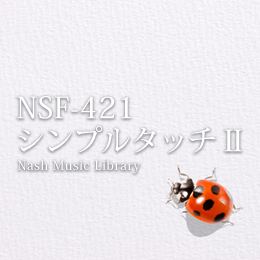 NSF-421 191-SIMPLE TOUCH II
