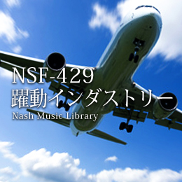 NSF-429 195-Dynamic Industry