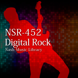 NSR-452 207-Digital Rock