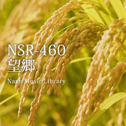 NSR-460 211-Hometown Longing