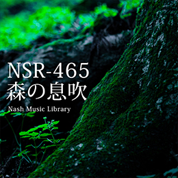 NSR-465 213-Breath of the Forest