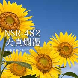 NSR-482 222-天真爛漫