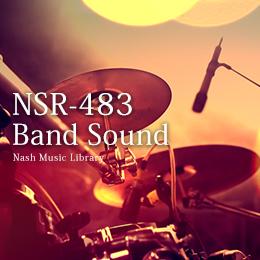 NSR-483 222-Band Sound