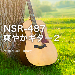 NSR-487 224-Refreshing Guitar 2