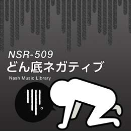 NSR-509 235-Lowest Low