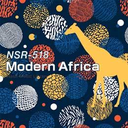 NSR-518 240-Modern Africa