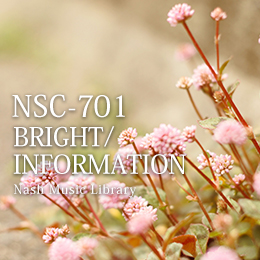 NSC-701 05-BRIGHT/INFORMATION