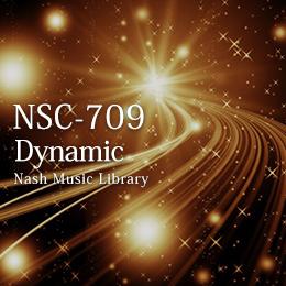 NSC-709 13-Dynamic