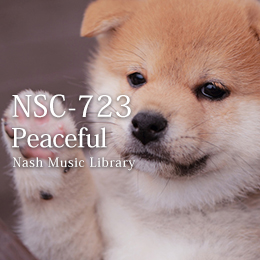 NSC-723 27-Peaceful