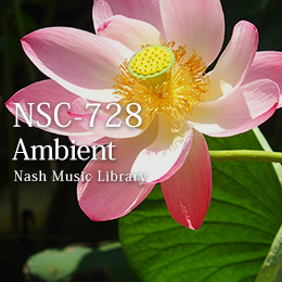 NSC-728 32-Ambient